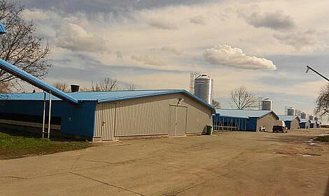 Six poulaillers ont été équipés de systèmes d'élevage aménagés à la ferme de poules pondeuses de Kruščić.