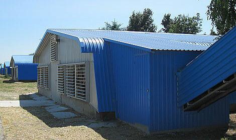 Big Dutchman a équipé les poulaillers avec des systèmes qui permettent une ventilation optimale par CombiTunnel.