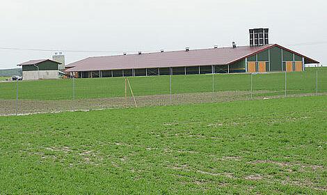 Poulailler pour l'élevage plein air