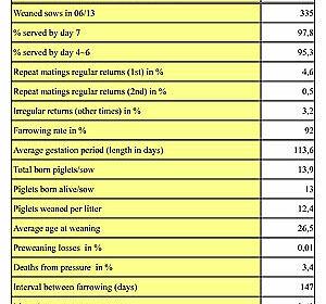 Elevage de truies : une fiche de données