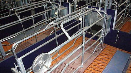 Matériel d'élevage pour l'élevage de truies : porcherie de mise bas