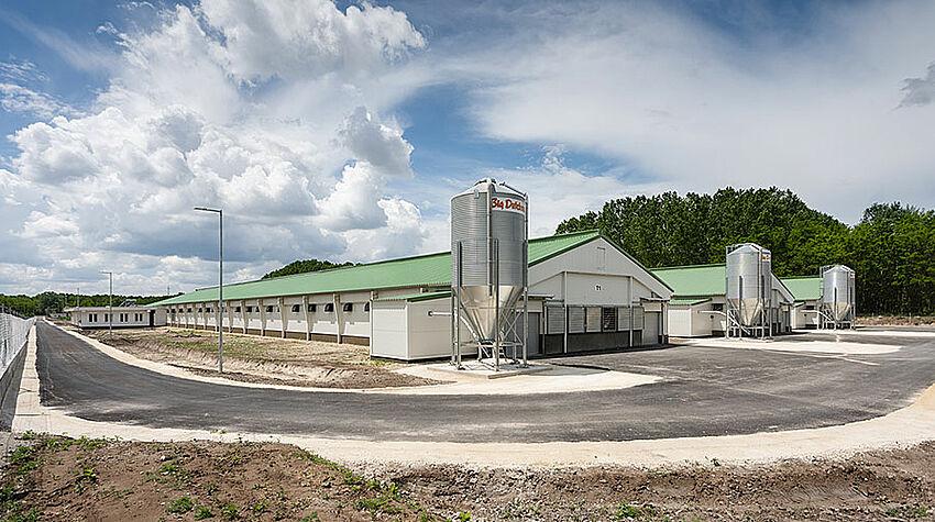 Trois bâtiments et trois silos d'aliment pour l'élevage de reproducteurs