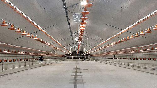 Le nouveau bâtiment pour l'engraissement de poulets de chair avant la mise en service