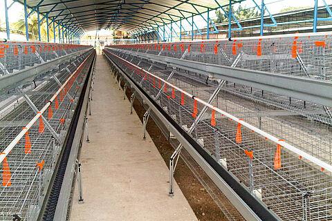 Systèmes cage SuperDoubleDeck & SuperTripleDeck