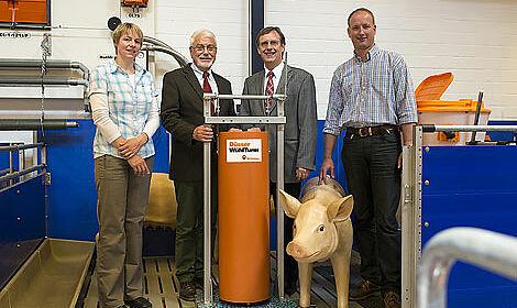 Atelier d'engraissement : la colonne de jeu pour accroît le bien-être animal
