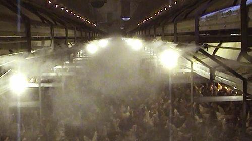 Brouillard d'eau au-dessus du sol du bâtiment