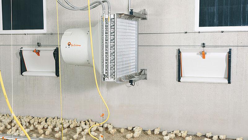 Températures optimales dans le bâtiment avicole avec HeatMaster