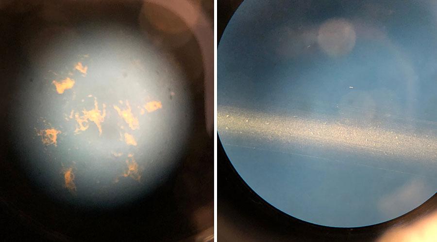 Zwei Mikroskopbilder