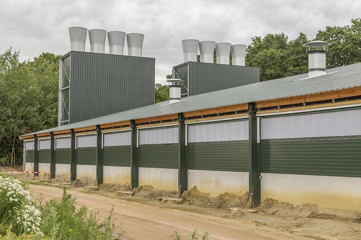 Inauguration d 39 un poulailler ultra moderne pour l 39 levage for Plan de construction poulailler industriel